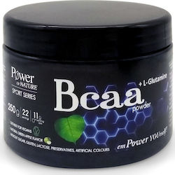 Power Health Bcaa + L-Glutamine 250gr Green Apple